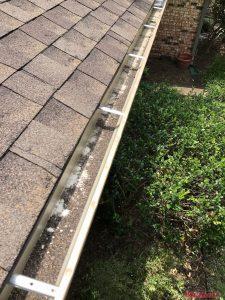 Gutters In Need of Gutter Installation