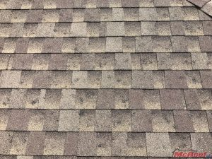 Roof Needing Roof Hail Damage Repair